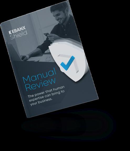 Manual Review Image